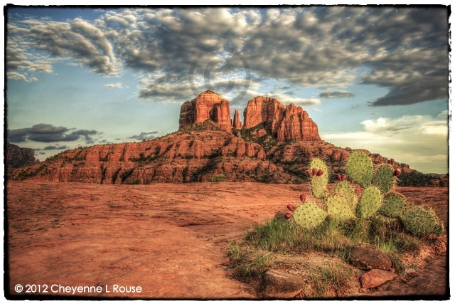 Sedona Sunset & Cactus - Processed with Photomatix HDR software