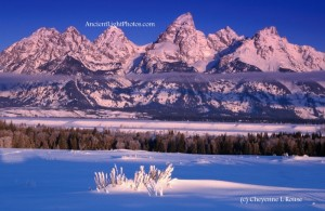 Teton Winter