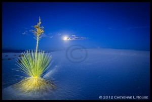 White Sands Light Painting