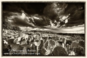 Dramatic Wild West Landscapes