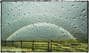 """Rainbows & Raindrops"""