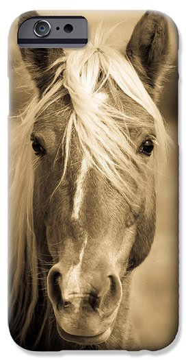 Wild Palomino iPhone case